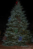 Goffstown Tree Lighting-7468