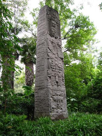 From the Halls of Montezuma...