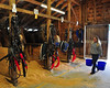 Draft horse stables