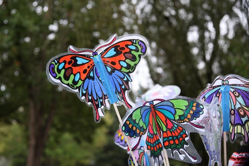 Butterfly-24-24