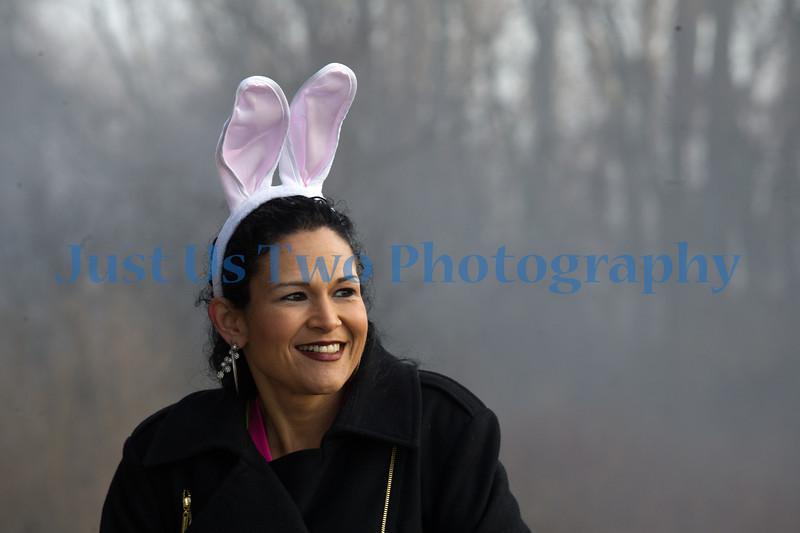 funny_bunny_barath_7