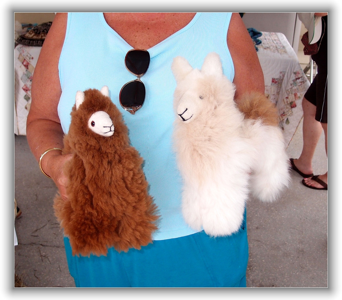 stuffed alpacas