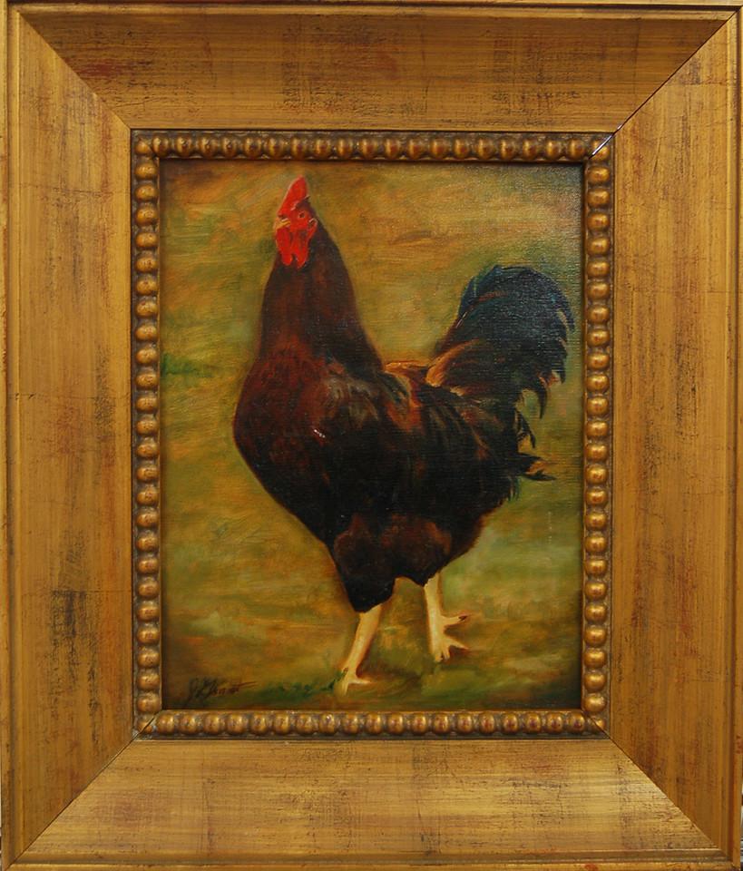 Rooster<br /> Framed Oil on Canvas<br /> Jan Grant<br /> $450