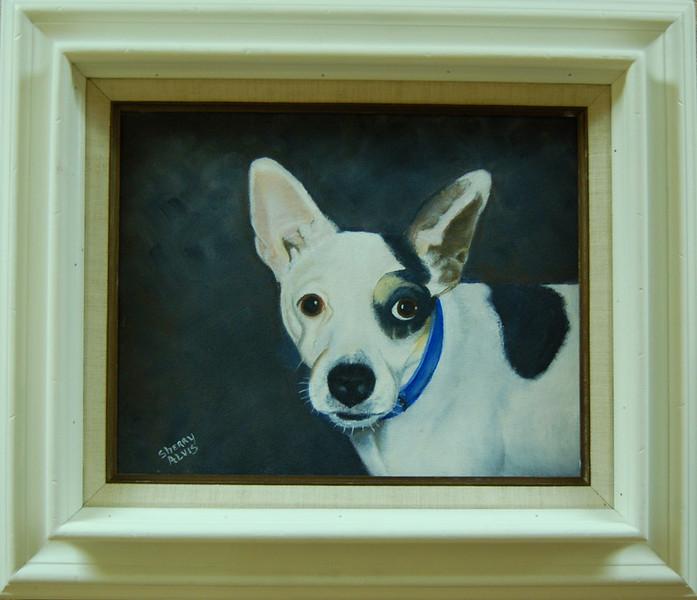 Petey<br /> 11 x 14 Framed Oil on Canvas<br /> Sherry Alvis<br /> $105