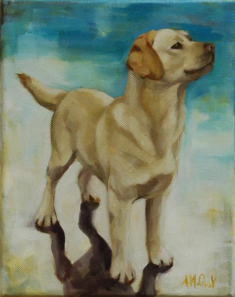 Beach Bum Dog<br /> 8 x 10 Oil on Canvas<br /> Alicia Cook<br /> $250