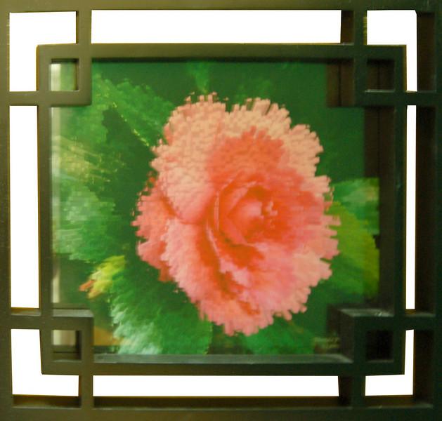 Camellia Art<br /> 11 x 14 Framed Photograph<br /> Rhonda Pyatt<br /> $50