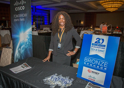 20150203-182851 FusionStorm Tech 20 Summit