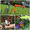 Garden Collage6