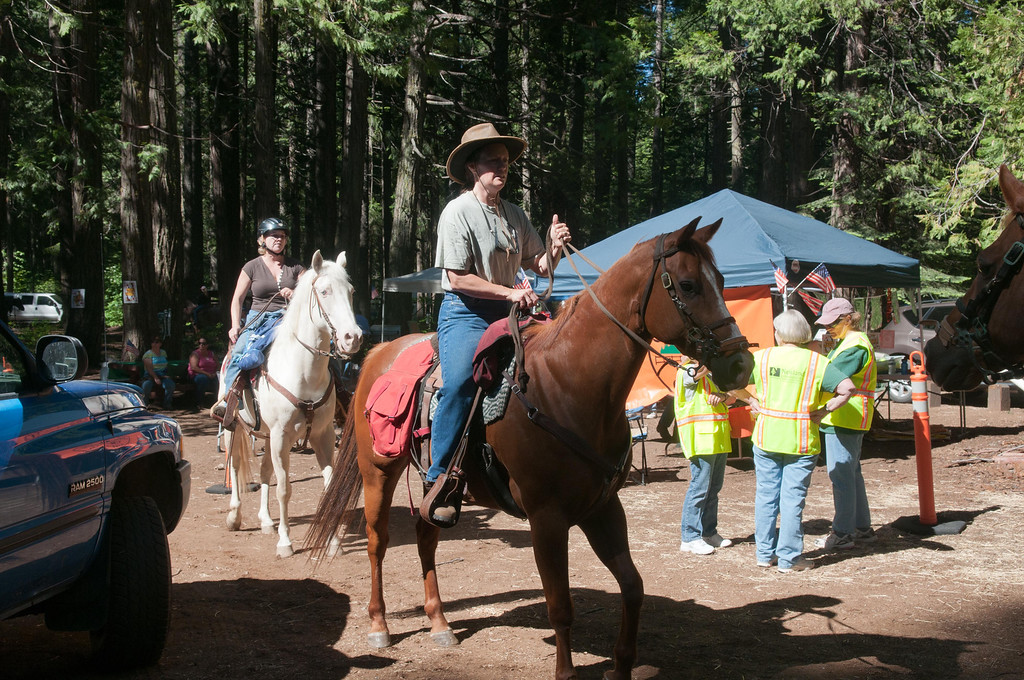 The Riders and Their Horses