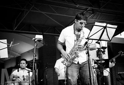Gato & Palenke Music Co