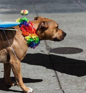GayPride2014-128