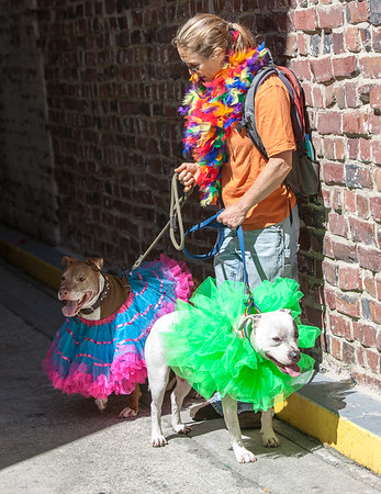 GayPride2014-119