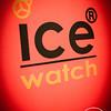 ICE-08072012-003