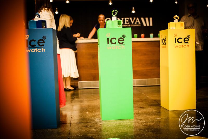 ICE-08072012-004