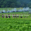 Hanover Cavalry Battle MIN_8252B