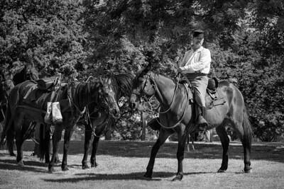 Gibson Ranch Civil War Reenactment