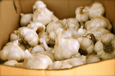 More Garlic