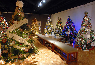 Christmas trees are on display at the Gevena History Center as part of the Giving Tree program in which non-profit organizations decorate trees in their theme Wednesday Dec. 19, 2012. The trees are judged by votes from residents. Erica Benson-ebenson@shawmedia.com