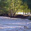 Whitewater creek upstream from the hwy 180 bridge.