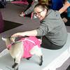 0217 goat yoga 11