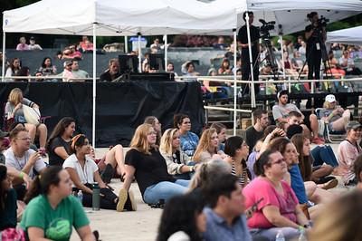 The Good Vibrations Music & Arts Festival II