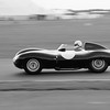 Jaguar D Type - no number