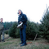 "Kayla Rice/Reformer<br /> Governor Peter Shumlin prepares to cut the tree of his choosing at Elysian Hills Farm in Dummerston while farm owner Bill Schmidt stands by. The tree will be this year's ""holiday tree"" for the Pavilion Office Complex in Montpelier."