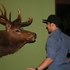 AJ takes on the elk