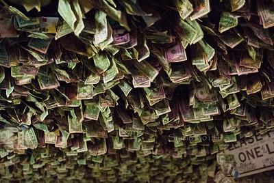 Ceiling of dollars Greasewood 9188