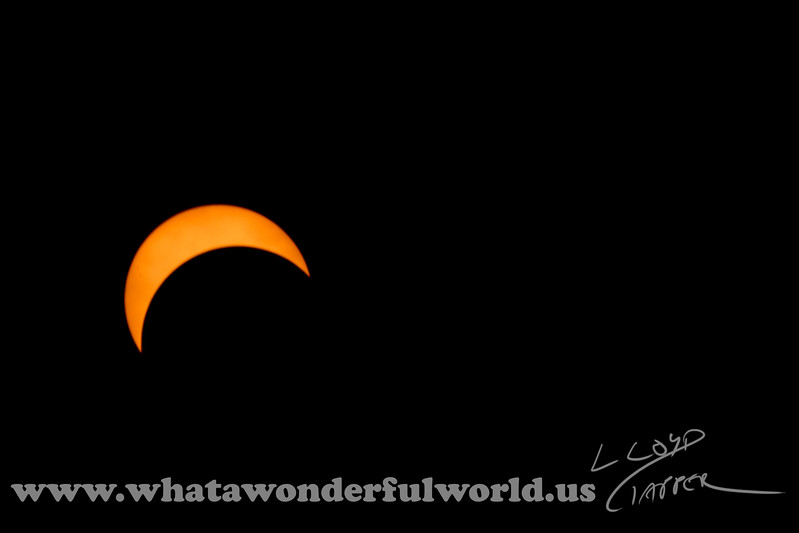 Solar Eclipse_310_20170821
