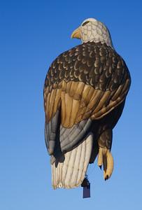 American Bald Eagle Balloon, Reno Balloon Races Sat. 9/6/08