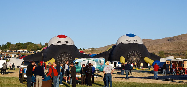 """Crown shot of """"The Bees"""", Lilly (red) and Joey (blue) being inflated. Reno Balloon Races Fri. 9/5/08."""