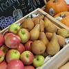 Farm Fresh To You apples and pears.  San Francisco Green Festival 2009, Concourse Exhibition Center, 635-8th St., San Francisco, California.