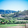 Greengate Ranch & Vineyard_002
