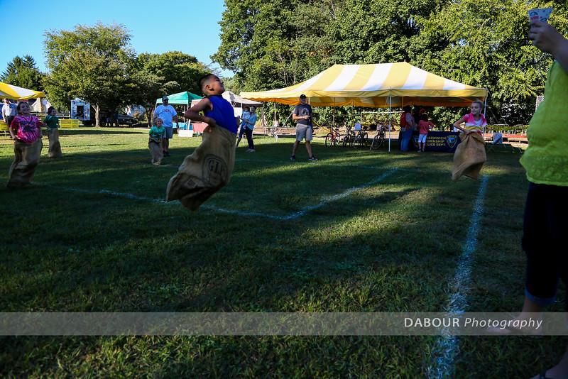 Greenwich Township Community Day 2014
