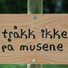 KLATREMUS OG ALLE DE ANDRE DYRENE I HAKKEBAKKESKOGEN<br /> Norsk Sceneskrekk  - Bassengparken Gjøvik 26/06/2015<br />  --- Foto: Jonny Isaksen