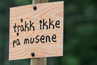 KLATREMUS OG DE ANDRE DYRENE I HAKKEBAKKESKOGEN Bassengparken Gjøvik 28/06 og 01/07/2018  --- Foto: Jonny Isaksen