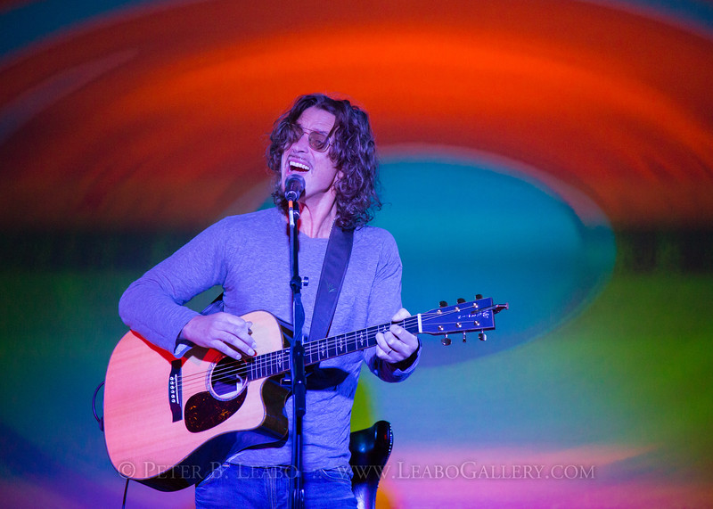 Chris Cornell performs at the HGST 2015 Leadership Conference at the Ritz-Carlton, Rancho Mirage, CA, on Feb. 10, 2015.