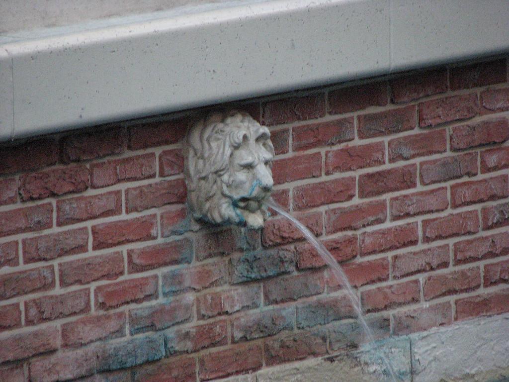 A lion's head fountain. How European.