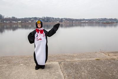 penguin_plunge_2014-001