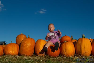 humc-pumpkin-patch-07