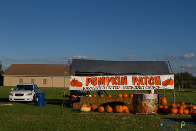 humc-pumpkin-patch-04