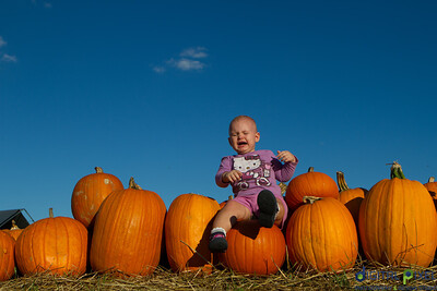 humc-pumpkin-patch-06