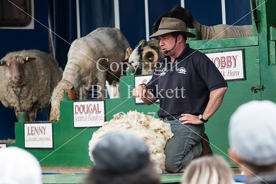 Hadleigh Show 2017-28_filtered