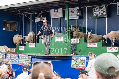 Hadleigh Show 2017-29_filtered