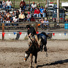 <p>Haines Stampede Rodeo, Oregon. July 3 2012</p> <p>Bronc Riding</p>