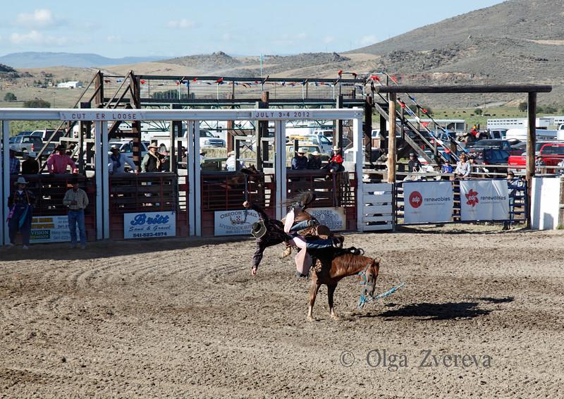 <p>Haines Stampede Rodeo, Oregon. July 3 2012</p> <p>Bronc Riding</p>