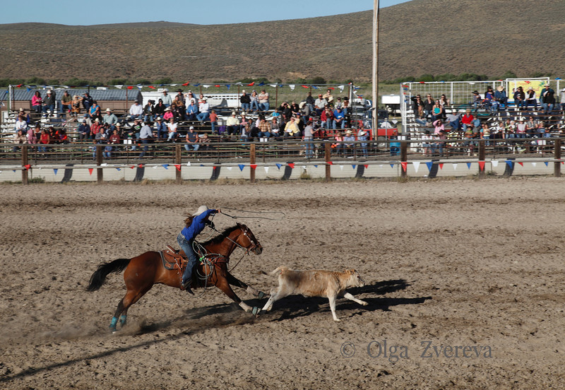 <p>Haines Stampede Rodeo, Oregon. July 3 2012</p>