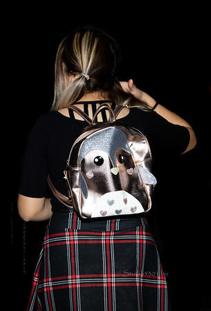 silver backpack 0870