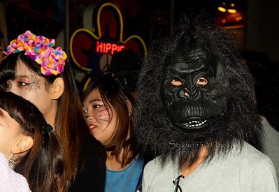 Monkey 0911